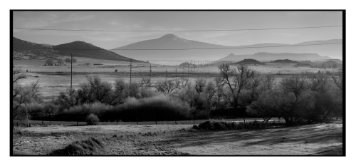 Winter Morning, Shasta Valley